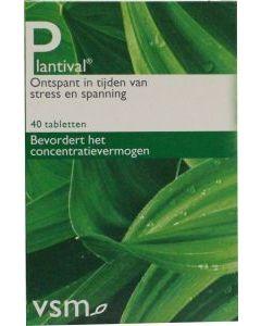 VSM Plantival
